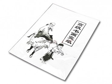 Professional Rice Paper for Drawing of Traditional Chinese Four Treasures of the Study (10*14 inch, 30 sheets)