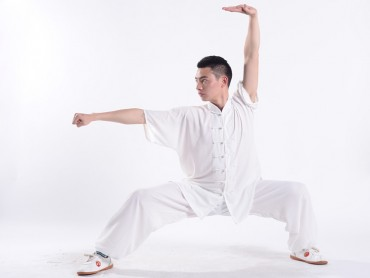 Professional Tai Chi Uniform Summer Man Half Sleeve White