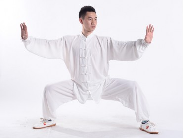 Professional Tai Chi Uniform Summer Man White