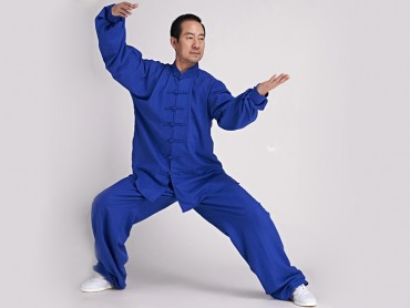 Tai Chi Clothing Linen Suit Navy Blue