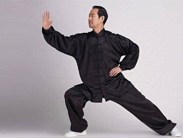 Tai Chi Uniform Silk Like Suit for Men Black