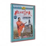 shaolin, shaolin kung fu, shaolin kung fu dvd, shaolin kung fu video, shaolin kung fu video dvd,  Shaolin Kung Fu DVD Shaolin Guandong Fist Video